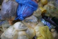 В Туле сжигают медицинские отходы класса Б, Фото: 22