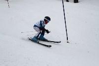 Второй этап чемпионата и первенства Тульской области по горнолыжному спорту., Фото: 4
