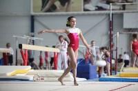 Соревнования по спортивной гимнастике на призы Заслуженных мастеров спорта , Фото: 53