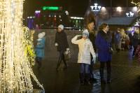 В Туле завершились новогодние гуляния, Фото: 9