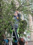 В Туле появилось Пасхальное дерево, Фото: 6