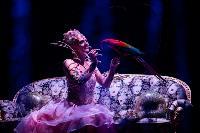 Шоу фонтанов «13 месяцев»: успей увидеть уникальную программу в Тульском цирке, Фото: 40
