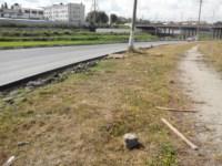 Мусор у дороги и порытый газон, Фото: 19