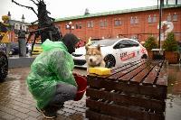 В Туле состоялся автомобильный фестиваль «Пушка», Фото: 49