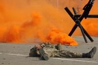 День Тульской дивизии ВДВ: на площади Ленина приземлились парашютисты, Фото: 65