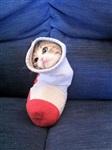 Жидкие коты, Фото: 6