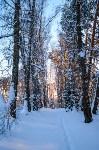Снежное Поленово, Фото: 65