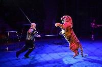 Цирковое шоу, Фото: 147