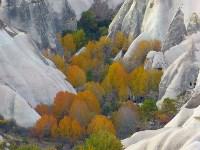 Куда поехать этой осенью?, Фото: 51