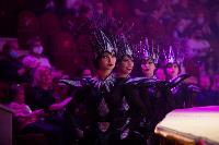 Шоу фонтанов «13 месяцев»: успей увидеть уникальную программу в Тульском цирке, Фото: 9