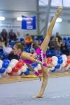 Соревнования по художественной гимнастике 31 марта-1 апреля 2016 года, Фото: 10