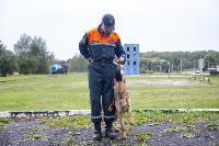 Испытания кинологов в Тульском спасательном центре, Фото: 22