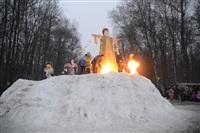 В ЦПКиО сожгли чучело зимы, Фото: 22