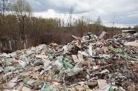 В Туле на берегу Тулицы обнаружен незаконный мусорный полигон, Фото: 29