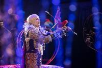 Шоу фонтанов «13 месяцев»: успей увидеть уникальную программу в Тульском цирке, Фото: 46