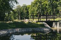 Летний день в богородицком парке, Фото: 63