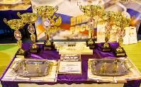 Плавск принимает финал регионального чемпионата КЭС-Баскет., Фото: 104