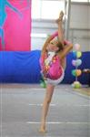 IX Всероссийский турнир по художественной гимнастике «Старая Тула», Фото: 30