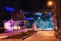 Тульские парки украсили к Новому году, Фото: 19