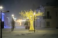 В Туле ночью бушевал буран, Фото: 56