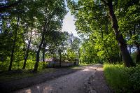 Летний день в Ясной Поляне, Фото: 4