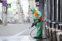 В Туле продолжается масштабная дезинфекция улиц, Фото: 18