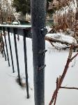 Кто устроил беспредел на кладбище Горняк, Фото: 5