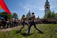 В Тульской области прошел фестиваль крапивы, Фото: 217