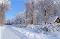 Русская зима, Фото: 3