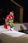 Цирк «Вива, Зорро!» в Туле , Фото: 31