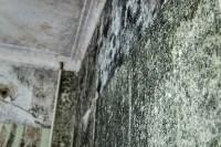 Общежитие г. Узловая, Фото: 20