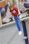 Первый этап Всероссийских соревнований по спортивной гимнастике среди юношей - «Надежды России»., Фото: 33