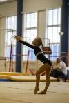 Спортивная гимнастика в Туле 3.12, Фото: 84