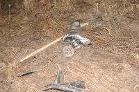 В жутком ДТП в поселке Рассвет погиб пассажир Audi A6, Фото: 21