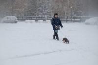 Снежная Тула. 15 ноября 2015, Фото: 4