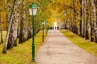 Золотая осень в Туле-2019, Фото: 108