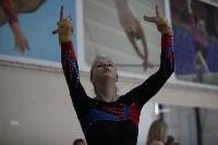 Соревнования по спортивной гимнастике на призы Заслуженных мастеров спорта , Фото: 26