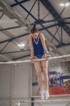 Первенство ЦФО по спортивной гимнастике, Фото: 85