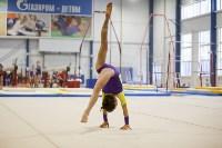 Спортивная гимнастика в Туле 3.12, Фото: 121