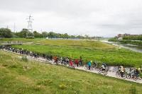 В Туле прошел большой велопарад, Фото: 108