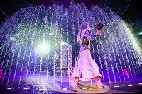 Шоу фонтанов «13 месяцев»: успей увидеть уникальную программу в Тульском цирке, Фото: 269