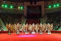 День защиты детей в тульском цирке: , Фото: 63