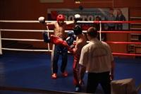 В Туле прошла матчевая встреча звезд кикбоксинга, Фото: 48