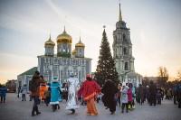 В Тульском кремле открылась новогодняя елка, Фото: 14