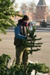 Установка ёлки на площади Ленина. 21 ноября 2014 года, Фото: 10
