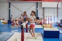 Тульские гимнастки готовятся к первенству России, Фото: 40