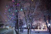 Новогодняя столица России, Фото: 39
