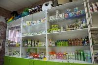 Советы ветеринаров: забота о здоровье питомцев осенью, Фото: 4