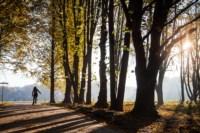 Центральный парк, утро, осень, Фото: 32