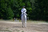 В Ясной поляне стартовал турнир по конному спорту, Фото: 115